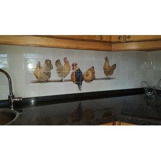 Voorbeelden - Fotogalerie - Photo Gallery Goudpel chickens