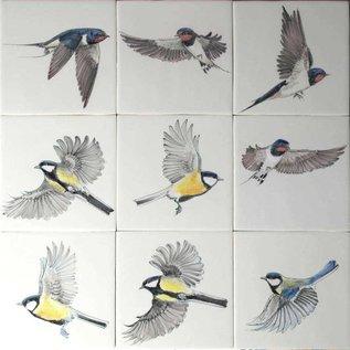 Dieren - Tieren - animals Free fliing birds