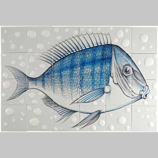 Dieren - Tieren - animals RH24-Fish20