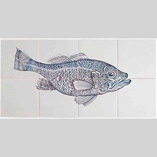Dieren - Tieren - animals RH8 FISH6