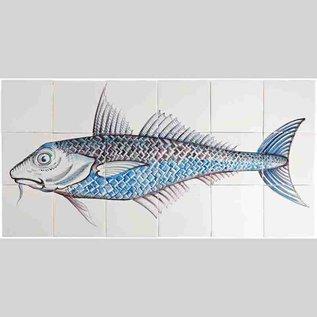 Dieren - Tieren - animals RH18-Fish4