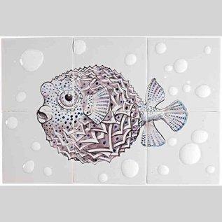 Dieren - Tieren - animals RH6-Fish22