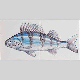 Dieren - Tieren - animals RH2-Fish8