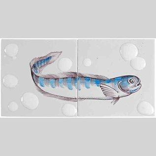 Dieren - Tieren - animals RH2-Fish16