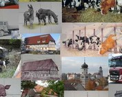 Your picture on tiles