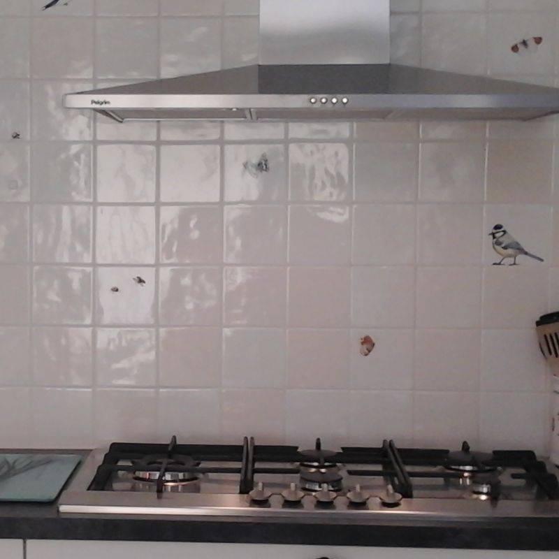 stroi fliesen in der küche, hier ist ein beispiel - friesische fliesen - Friesische Küche