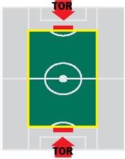 Flexibele Speelveldmarkering Senior: elastische speelveldmarekering op haspel, 150 meter inclusief haringen