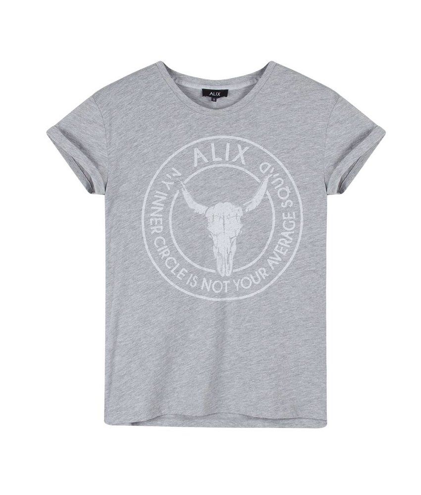 Alix The Label Bull boxy t-shirt (grey melange)