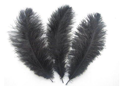 Zwarte veren (55-60 cm)