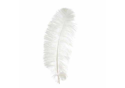 Witte veren (55-60 cm)