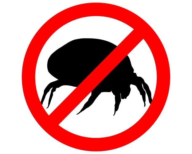 Allergie voor huisstofmijt