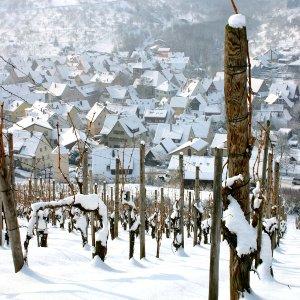Heerlijke witte winterwijnen