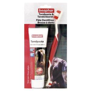 Beaphar Beaphar tandpasta & borstel combipack