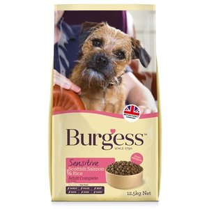 Burgess Burgess dog sensitive schotse zalm / rijst