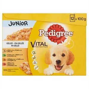 Pedigree Pedigree multipack maaltijdzakjes junior in gelei