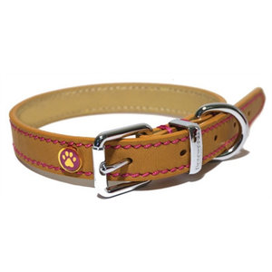 Rosewood Luxury leather halsband puppy / kleine hond zand met studs