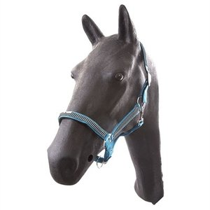 Hb ruitersport Hb halster pony diamonds collections turquoise