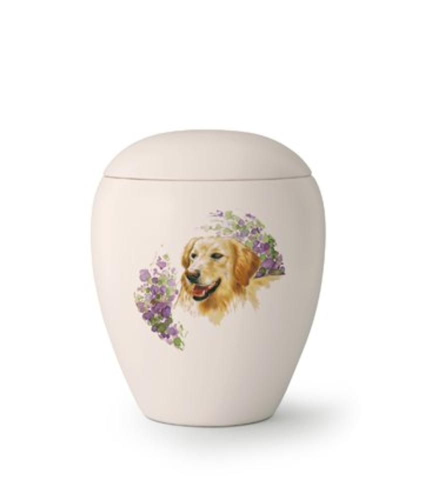 Hondenrun Golden Retriever - keramiek