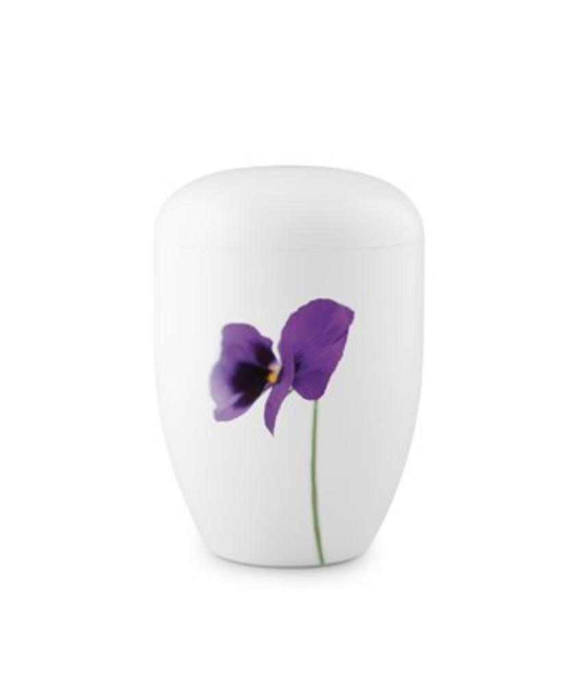 Eco urn wit viooltjes - bio