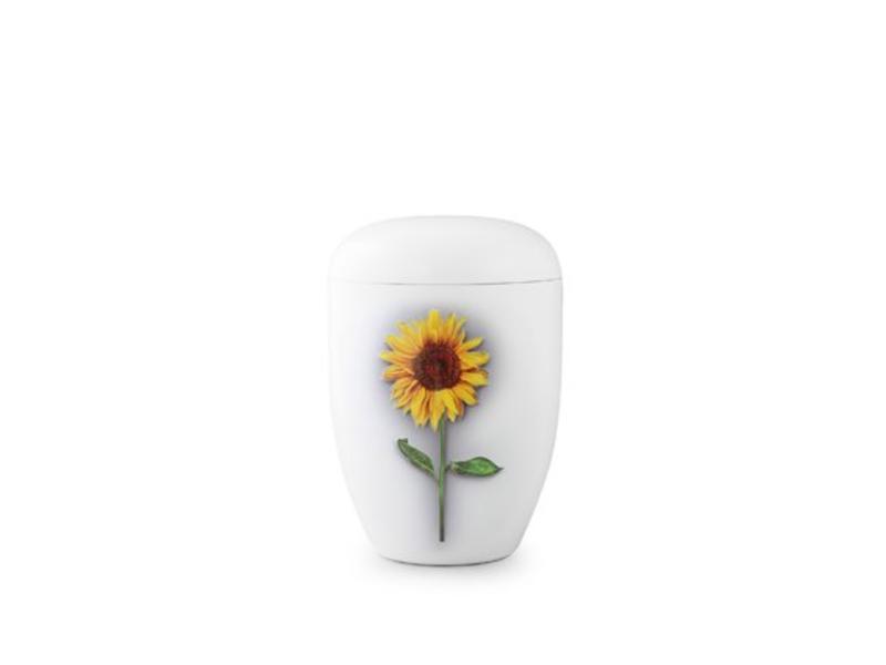 Eco urn wit zonnebloem - bio