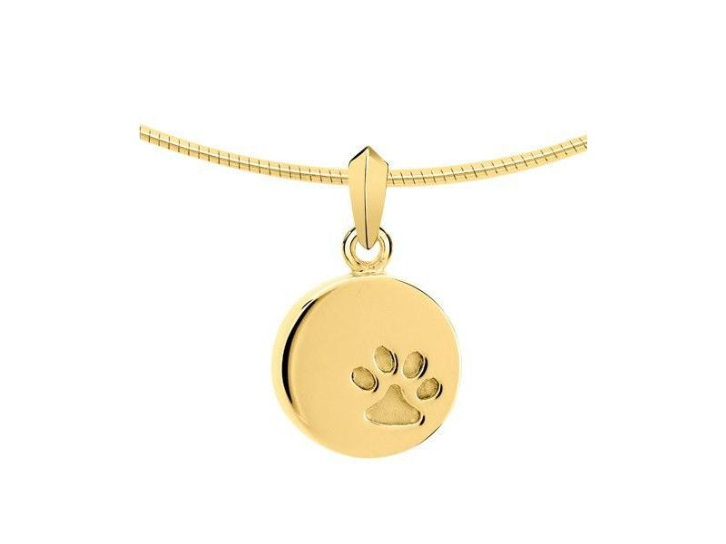 Ashanger disk met pootafdruk - goud