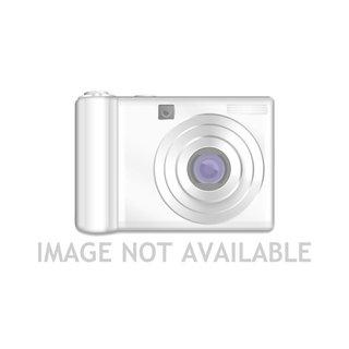 BlackBerry Torch 9800 Schroevenset1