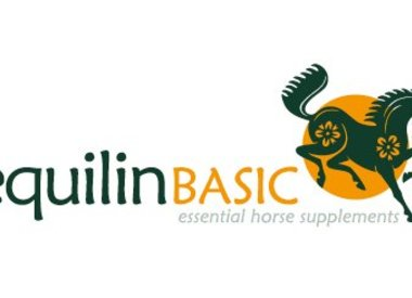 EquilinBASIC