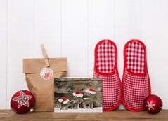 Geschenke & Geschenkidee