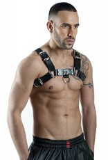 RoB H-Chest Harness