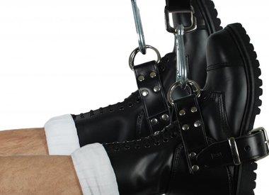 Restraints & Collars
