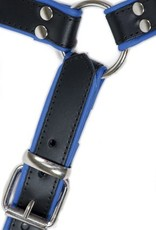 RoB H-Front Harnas met blauwe bies