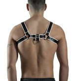 RoB H-Chest Harness mit weissem Piping