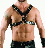 RoB Y-Front Harness