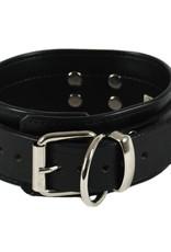 RoB Leather Slave Collar