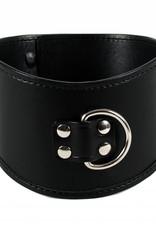 RoB Leather Posture Collar
