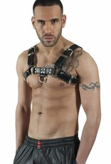 RoB H-Front Harness with black piping
