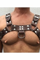 RoB H-Front Harness Dark Brown