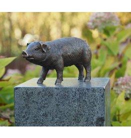 Bronze-Schwein