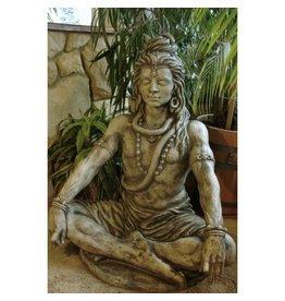 Beeld Shiva mediater