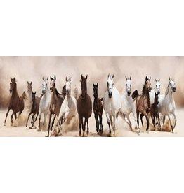 Schilderij glas 60x180cm Horses