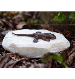 Eliassen Figurine Bronze Eidechse auf Stein