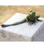 Bild Bronzefrosch mit gestreckten Bein