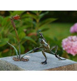 Bild Bronze Frosch und Libelle im Schilf