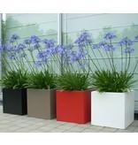 Adezz Aluminium plantenbakk florida verschiedenen Größen adezz