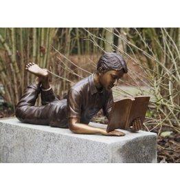 Beeld lezende jongen