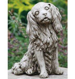 dragonstone Cavalier King Charles Hund