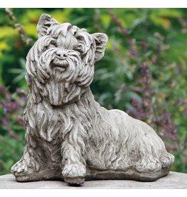 Dragonstone Yorkshire-Terrier-Hund