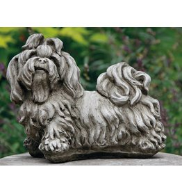 dragonstone Shih-Tzu Hund