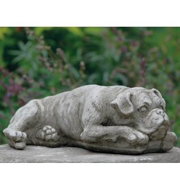 Dragonstone Boxerhund