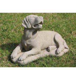 dragonstone große Labrador